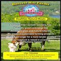 Harvest Hills Farms