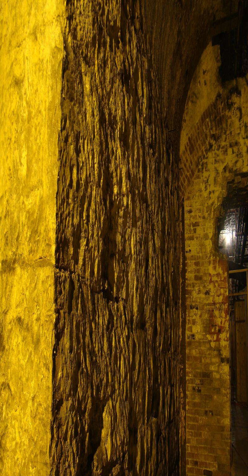 interior photos of the lemp