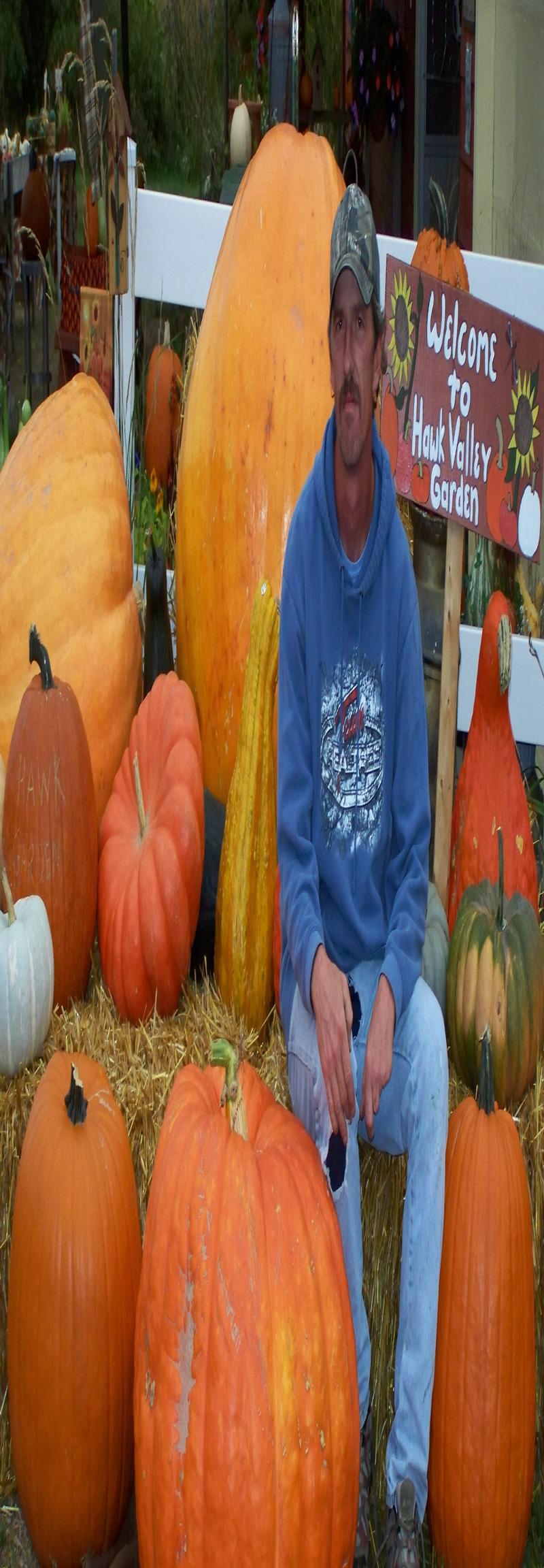 halloween attractions.com