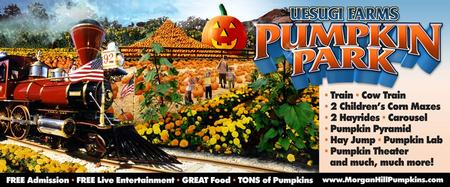 Pumpkin patch benefits local schools | watsonville, ca patch.