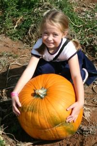 Mccalls pumpkin patch haunted house