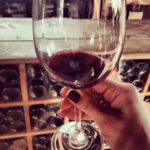 The Best Wine Bars {in Hoboken and Jersey City}