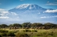 Mount Kilimanjaro - Hub Culture Expeditions