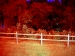 Contemporary Art  / Amber Hsu / Photograph / Red Dream, White Fence