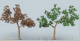 Green Leaf Tree 3D Model