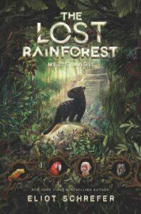lost-rainforest1