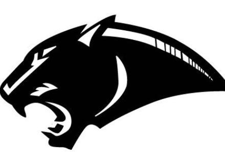 38920-jmss-panthers-logo