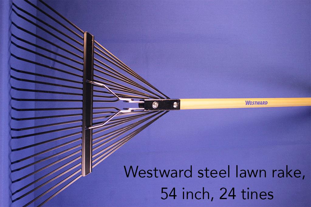 Westward steel lawn rake, 54 inch, 24 tines.