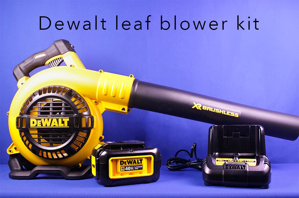 Dewalt leaf blower kit.