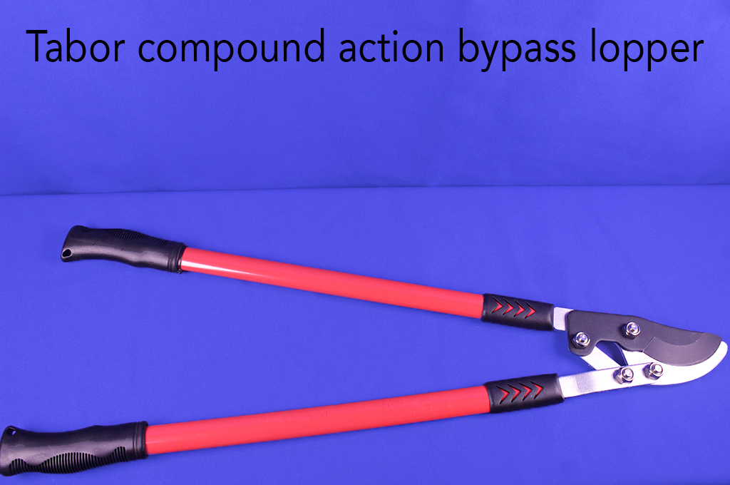 Tabor compound action bypass lopper.
