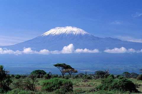 Hub Culture Expeditions: Mount Kilimanjaro