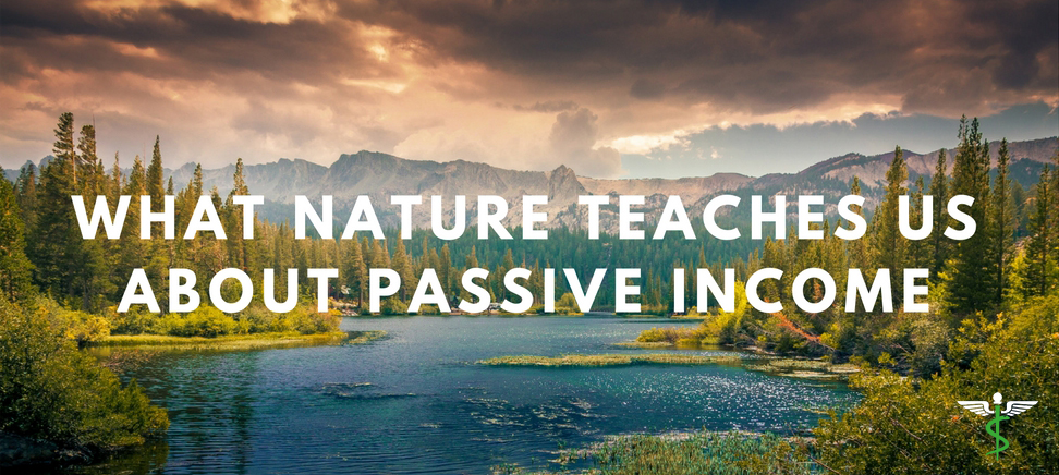 What Nature Teaches Us About Passive Income  Md Magazine. Family Ungrateful Quotes. Tattoo Quotes Going Down Spine Tumblr. Heartbreak Quotes In Malayalam. Friday Quotes What You Know About Game. Tumblr Quotes Desktop Wallpaper. Quotes About Strength After Losing A Loved One. Movie Quotes War Games. Trust Quotes In Relationships