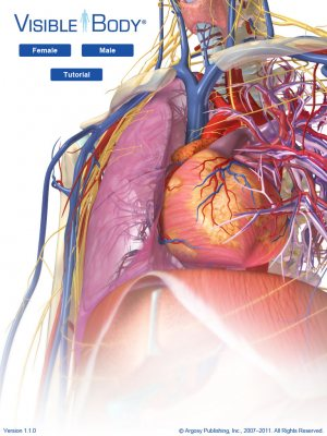 Top 4 Ipad Anatomy Medical Apps Md Magazine
