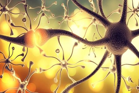 neurology, multiple sclerosis, MS