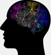 seizure brain