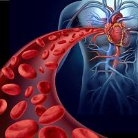 rheumatology, rheumatism, rheumatologists, rheumatoid arthritis, RA, cardiology, cardiologists, cytokines, TNF, cardiovascular events, immunotherapy, internal medicine, hospital medicine