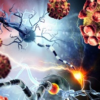 Multiple Sclerosis Relapses with Natalizumab Not Predictive