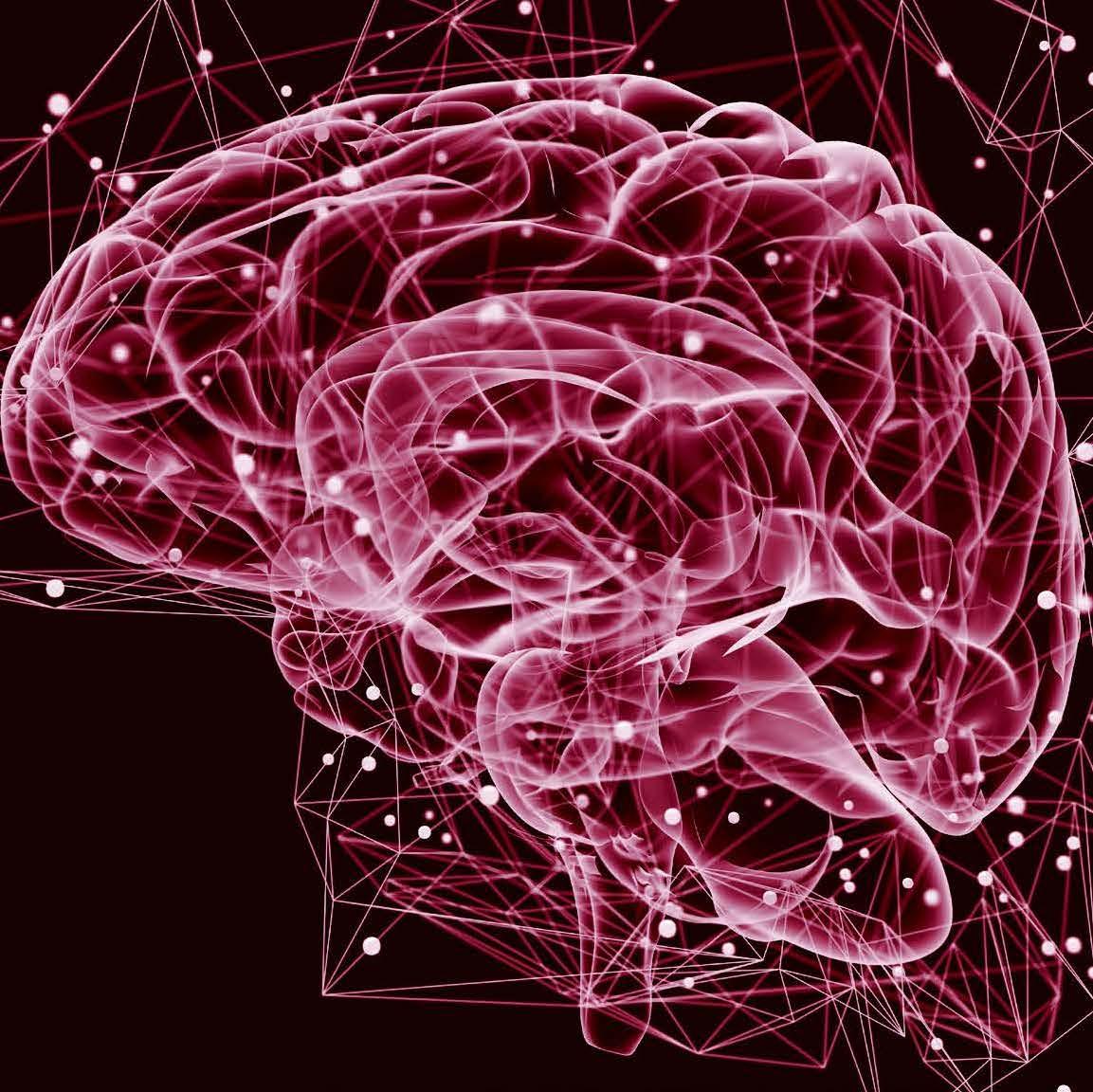 brain with Parkinson disease
