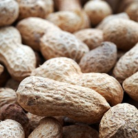 Peanuts, Peanut allergy, oral immunotherapy, peanut allergy immunotherapy.