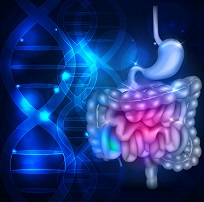 Promising Results for Experimental Irritable Bowel Syndrome Drug