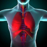 COPD, lungs