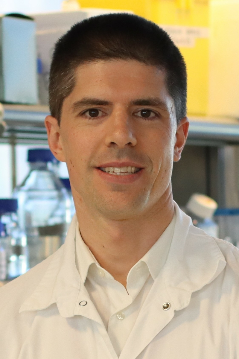Rodrigo Fernandez-Jimenez, MD, PhD