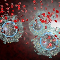 HIV Hides in Brain, Kidney Tissues Even When Undetectable in Blood