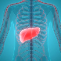 Hepatitis C Is No Match for Sorafenib-Treated Hepatocellular Carcinoma