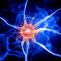 Peripheral Nerve Regeneration Possible with Protein Boost