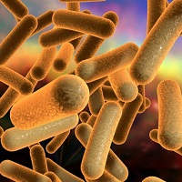Increased Incidence of C difficile in Travelers Returning Home
