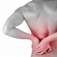 Low Back Pain Reduced with Exercise and Education