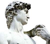 Disease Detectives Diagnosis Michelangelo's Ailment