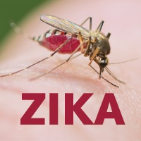 Zika Is the Hottest Topic at ID Week