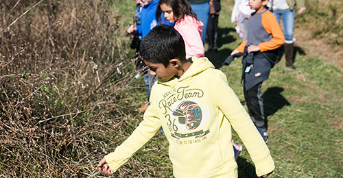 Pointers Run Elementary School students working on a conservation project.