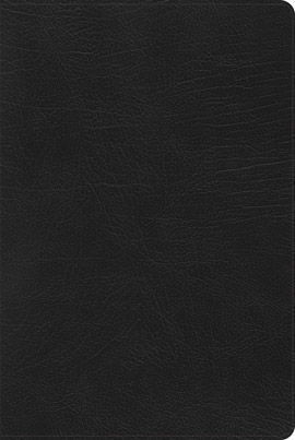 NIV Black Book Cover
