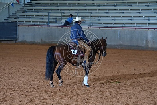 Stock Horse of Texas - February - Bryan