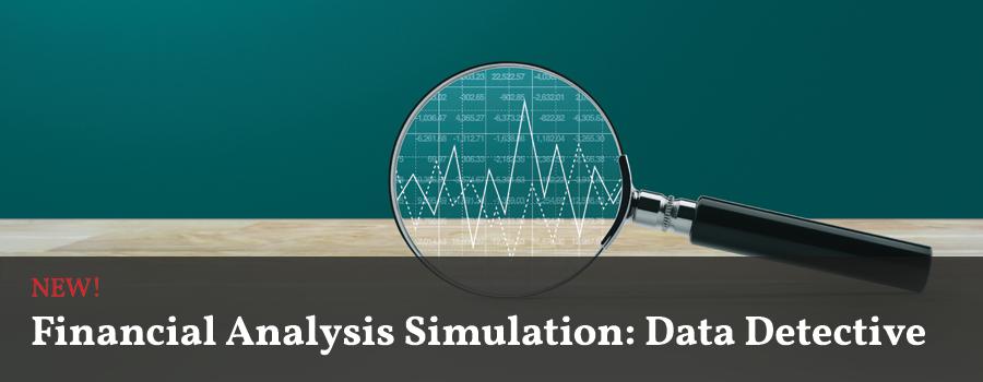 Financial Analysis Simulation: Data Detective