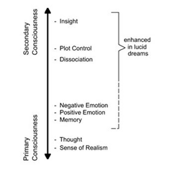 Model of dream of consciousness from Voss et al. 2014, lucid dreaming, gamma ray, sleeping, induced, inception, aware of dreaming, self aware in a dream - HeadStuff.org