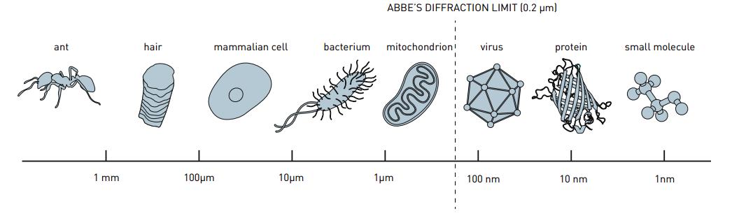 Ernst Abbe Diffraction Limit