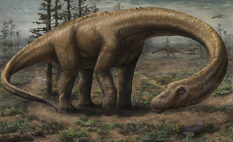 Dreadnaughticus, the largest dinosaur that ever was - headstuff.org