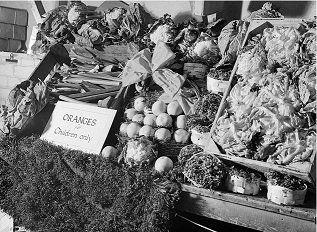 Photograph of a grocer's stall during World War 2 - headstuff.org