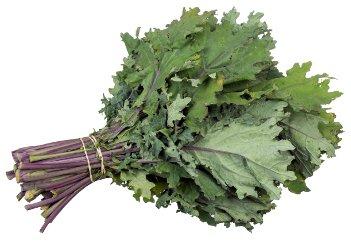 Kale - HeadStuff.org