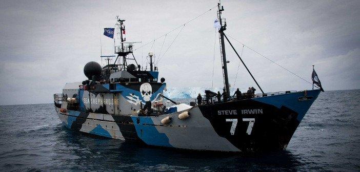 Sea Shepherds - HeadStuff.org