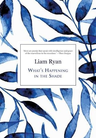 liam ryan book cover