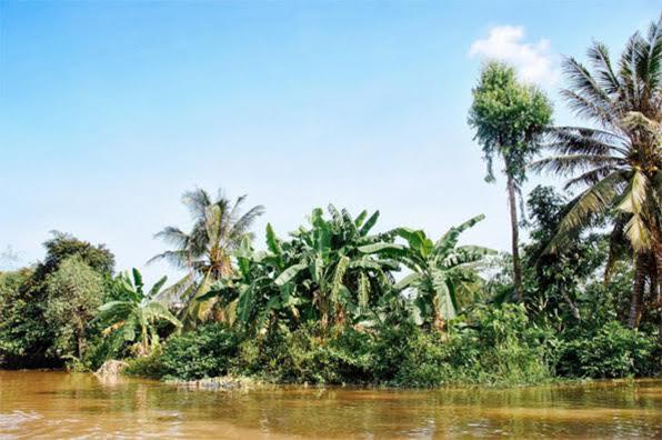 mekong delta aengus tukel - headstuff.org