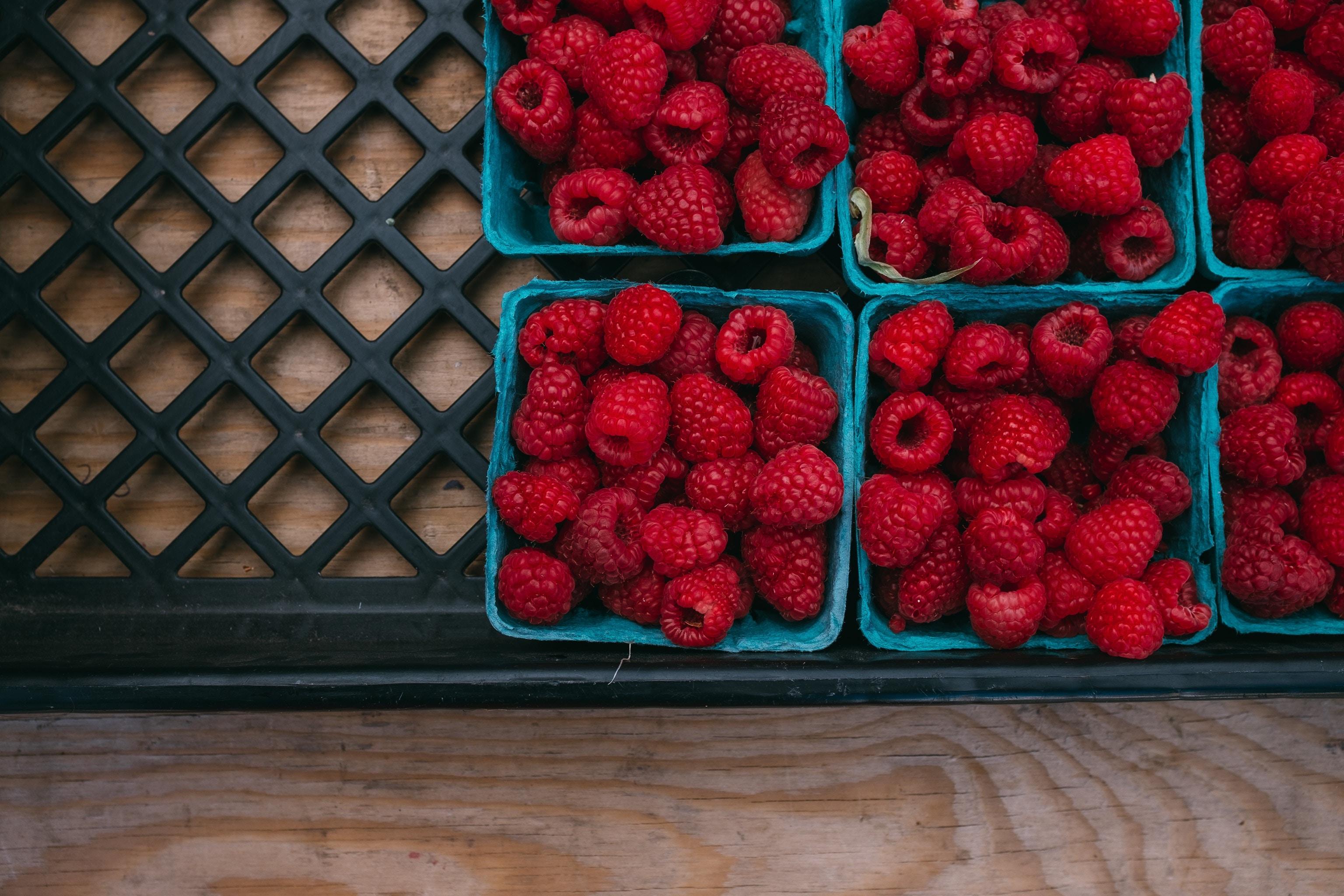 A War on Food Waste - Let's Start It