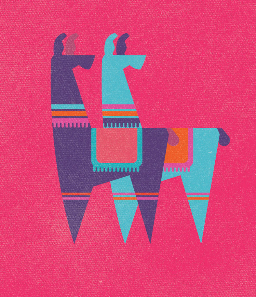 Llamas by Donough O'Malley. Instagram Pick of the Week
