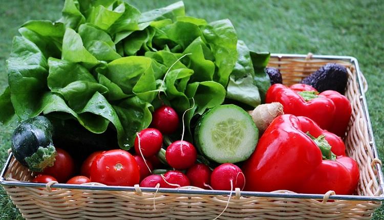 Vegetarianism vegetarian | HeadStuff.org