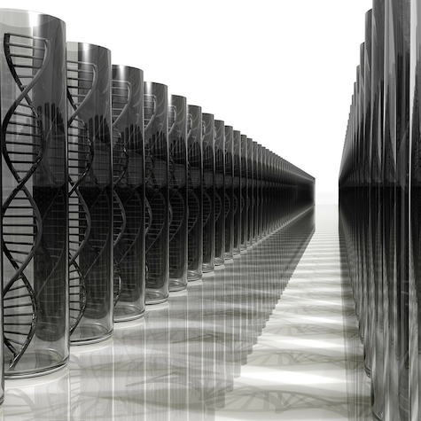 Privacy Concern or Public Benefit? Police Access to Consumer DNA in Question