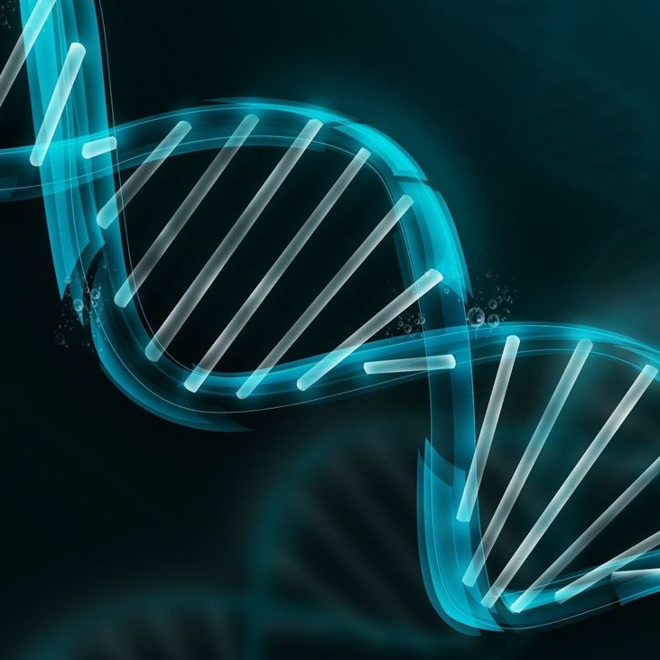 Medical Genome Initiative Launched by Top Healthcare and Research Orgs